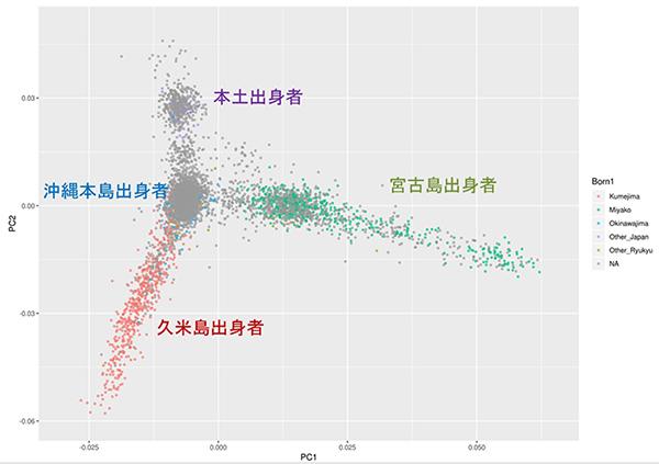 本土と沖縄、異なる遺伝背景 県内でも地域ごとに違い