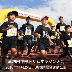 第29回中部トリムマラソン大会