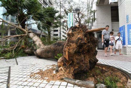 台風 17 号 沖縄