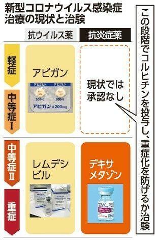 治験 コロナ 日本の大手もコロナワクチンの治験開始、塩野義は悲願を果たせるか:日経ビジネス電子版